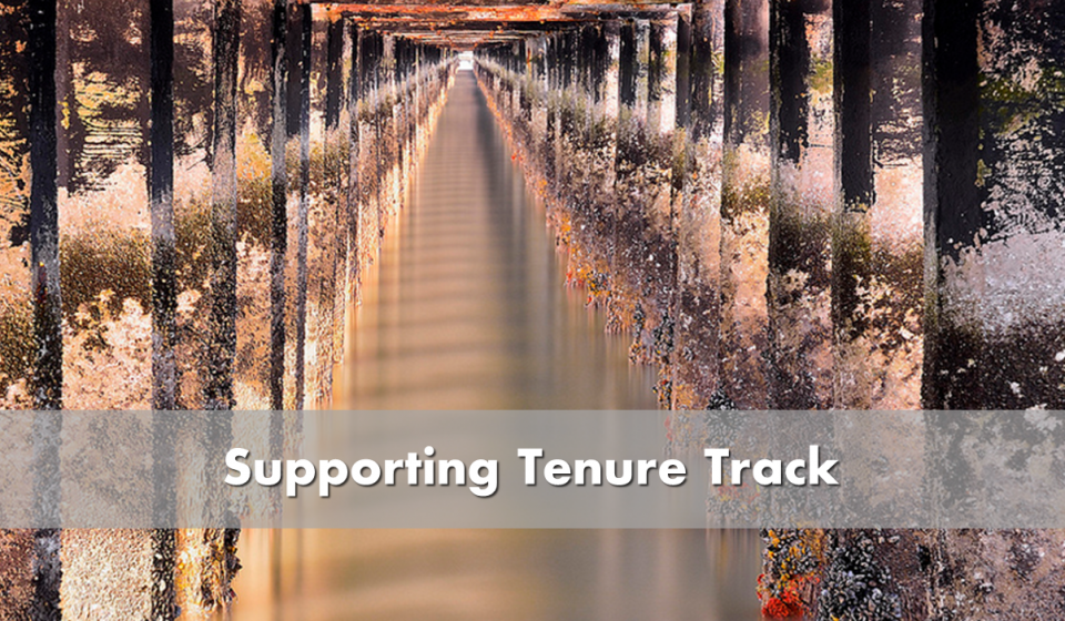 Supporting tenure track - picture of receding dock